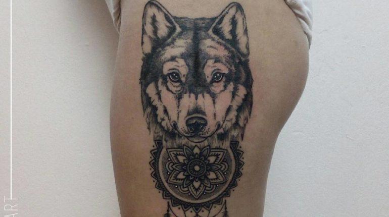 Heald 🐺🐺🐺 #wolftattoo #wolftattoos #wolf #dotworkwolf #realisticdotwork #realisticwolf #dotworkrealism #dotwork