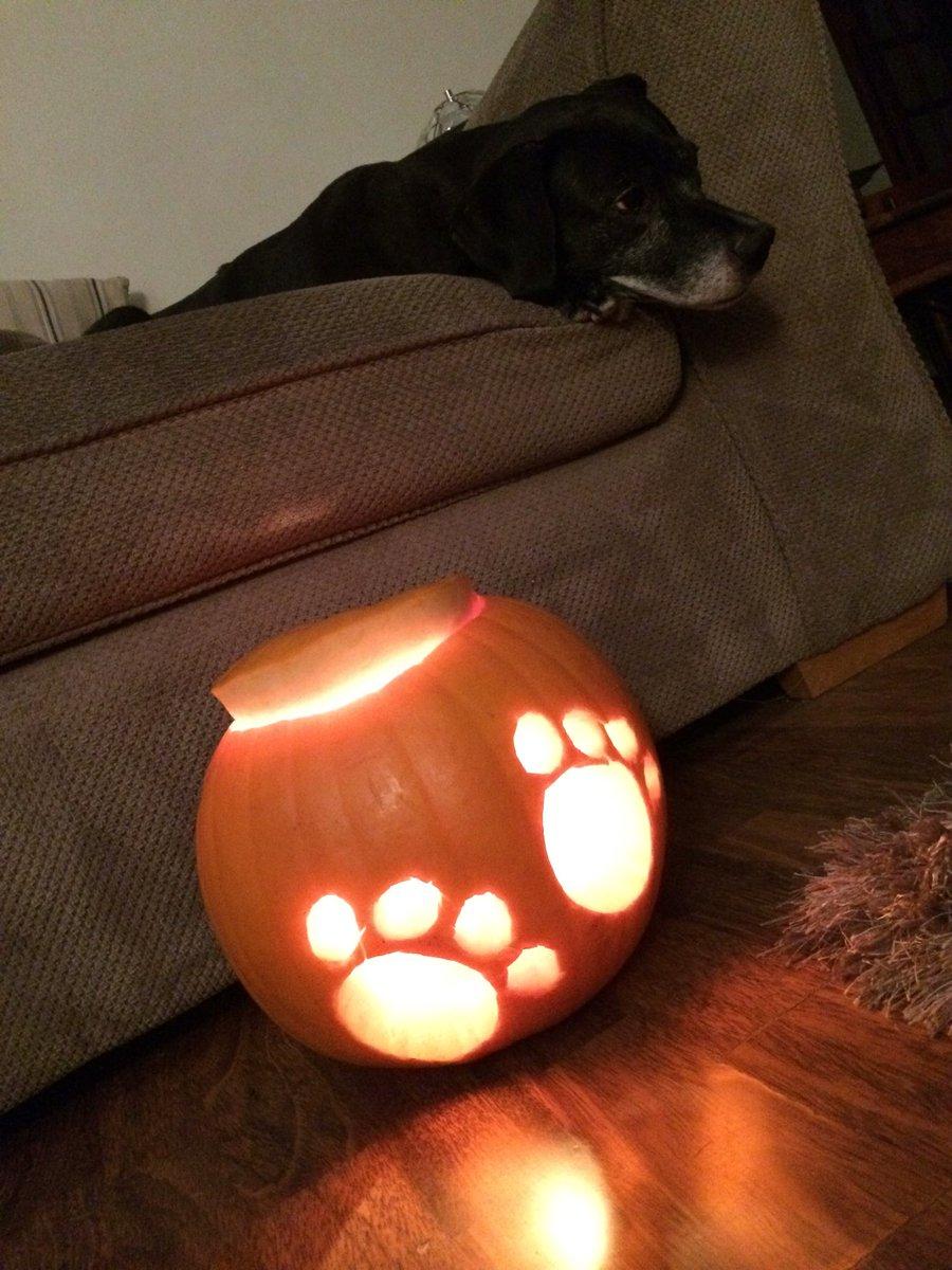 30 Interesting Pumpkin Carving Ideas For Halloween