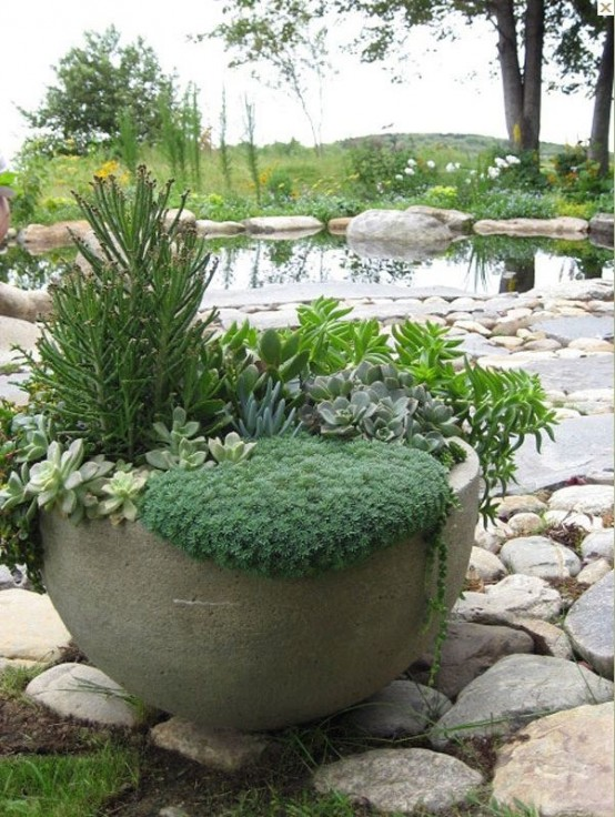 40 Amazing And Easy Outdoor Succulent Garden Ideas For You
