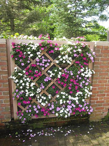 40 Innovative DIY Wall Gardens Outdoor Design Ideas To Keep Your ...