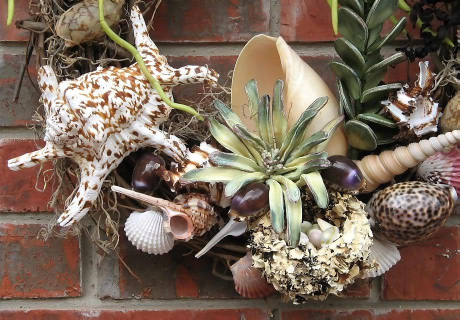 Do It Yourself Home Design: 45 Best Seashell Project Ideas To Keep The Vacay Mode On