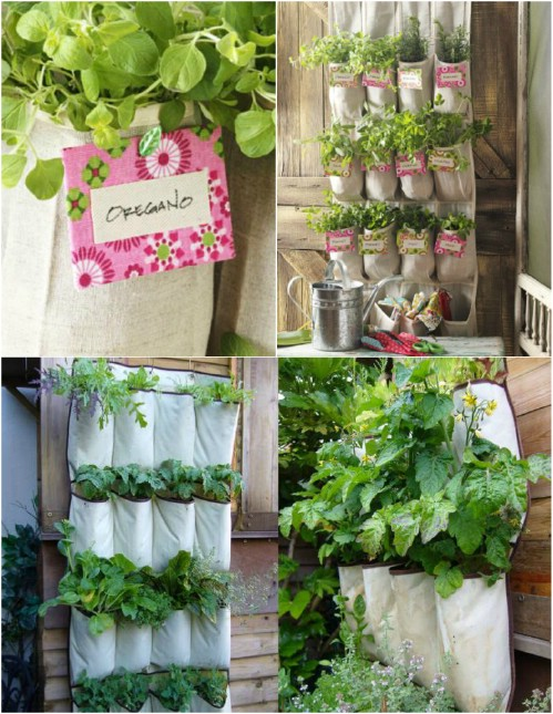 50 Enchanting Indoor Herb Garden Ideas That Are