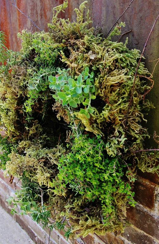 50 Enchanting Indoor Herb Garden Ideas That Are