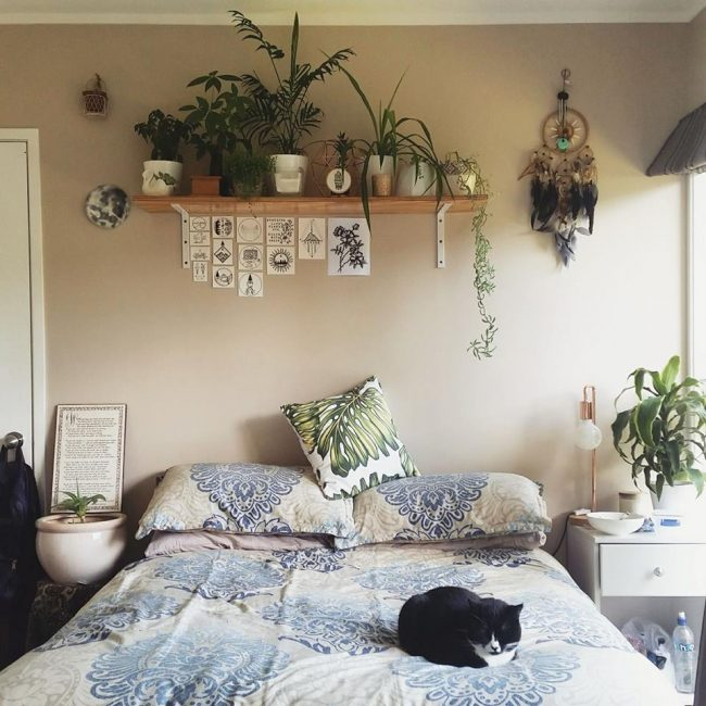 Contemporary Bedroom Design: 40 Beautiful Potted Plants That Inspires Beauty