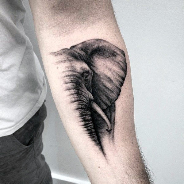 80 Stunning Elephant Tattoos to Choose From