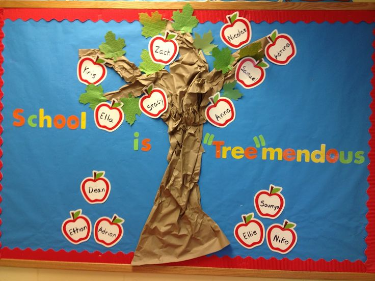 Bulletin Board for classroom Board that shall make your classroom the den of happiness - Gravetics