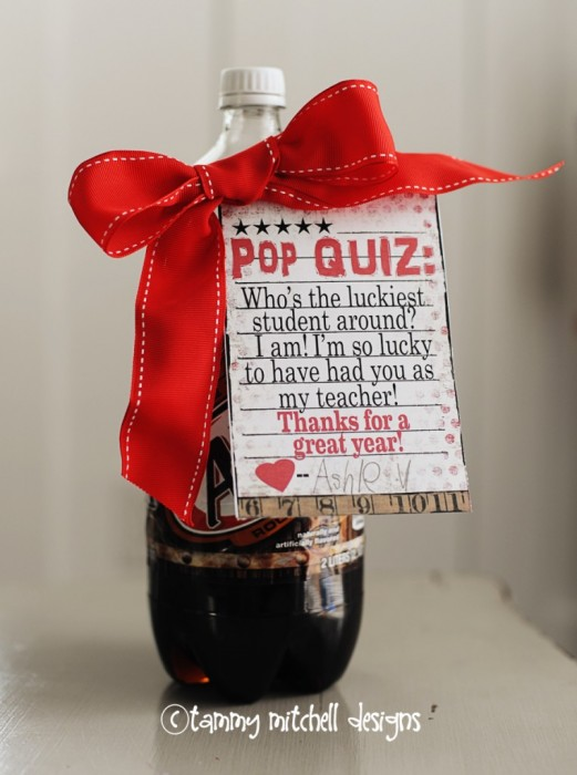Christmas Gifts For Teachers Diy.Celebrate Teacher Appreciation Week With These Special Diy